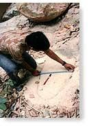 pe-gigante-de-bayan-lepas-tambem-na-malasia-foram-achados-tres-marcas-de-pes-gigantes-nesse-pais