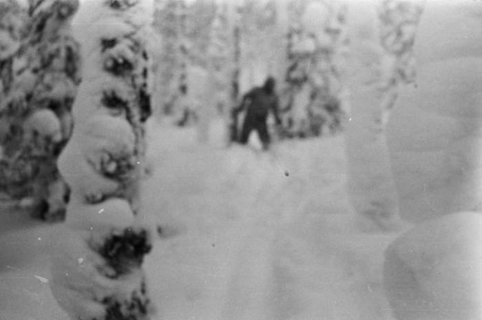 Yéti fotografado por equipe de nove exploradores russos na região de Dyatlov, nos Montes Urais. Esse Ogro matou os exploradores