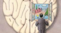 A Criatividade está intimamente relacionada com o hemisfério direito do cérebro